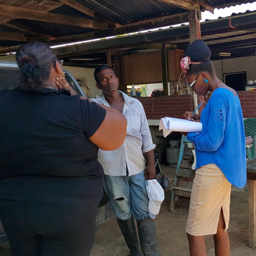 Suriname-Survey-of Living-Conditions-GAL2