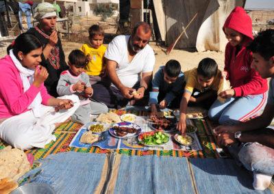 Iraq Household Socioeconomic Survey